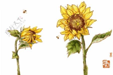 向日葵绘画书法