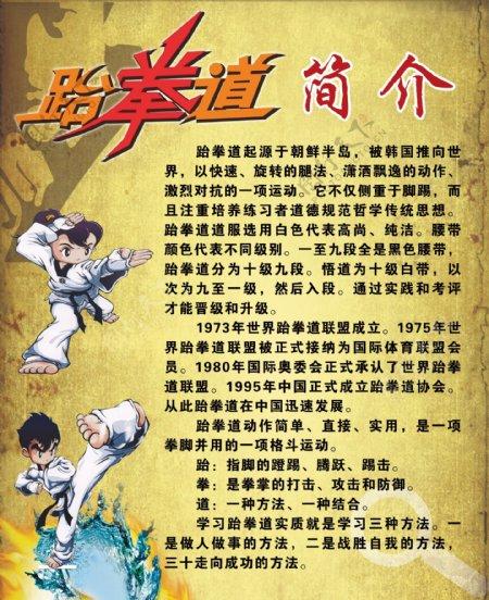 跆拳道简介图片