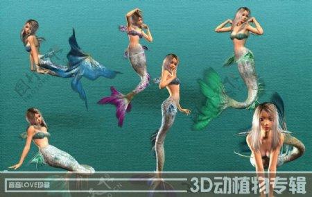 美人鱼素材图片