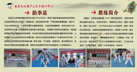跆拳道简介展板图片