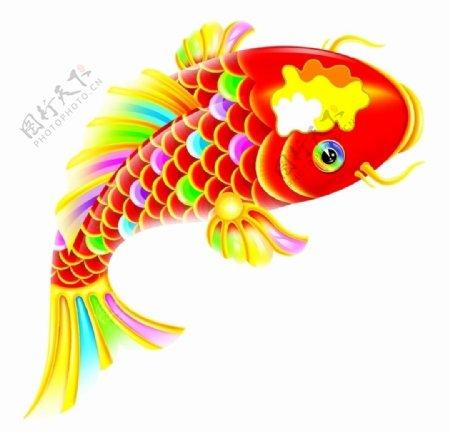 鲤鱼素材图片