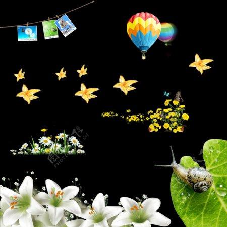 百合迎春花蜗牛