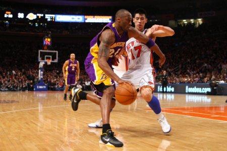 篮球明星科比图片