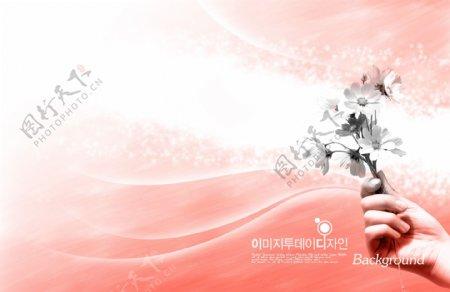 一束野菊花粉色梦幻背景素材