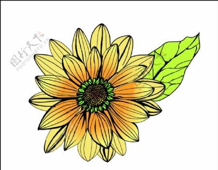 手绘向日葵图标底图素材