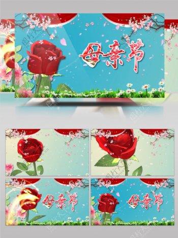 玫瑰母亲节节日庆祝ae模板
