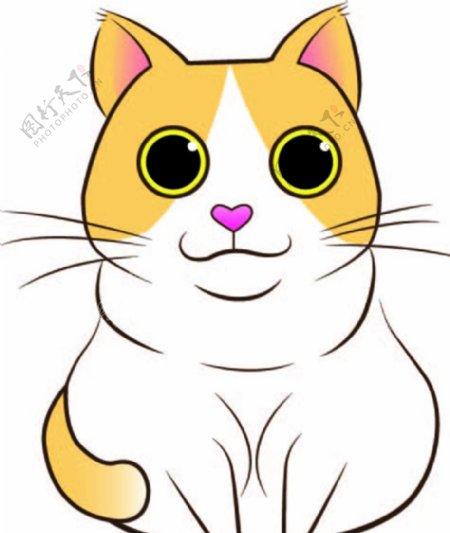 可爱胖猫咪