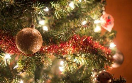 圣诞圣诞树圣诞节