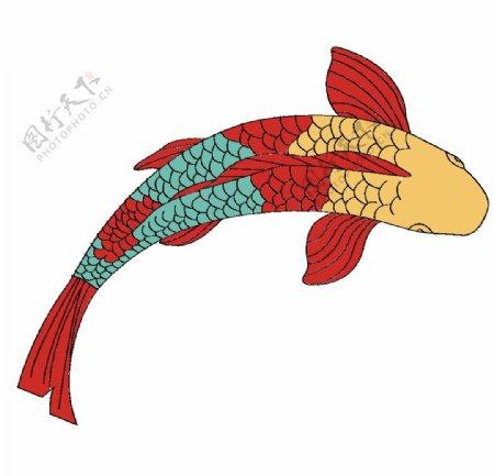 鲤鱼矢量图