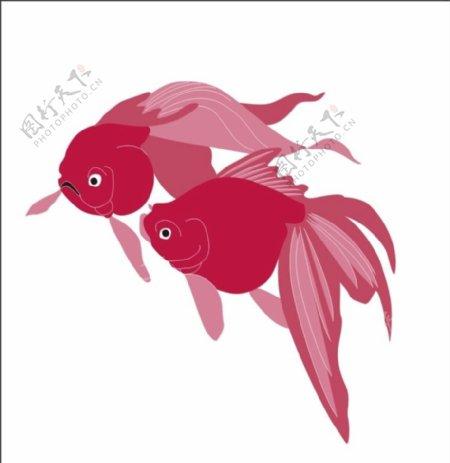 金鱼矢量图CDR