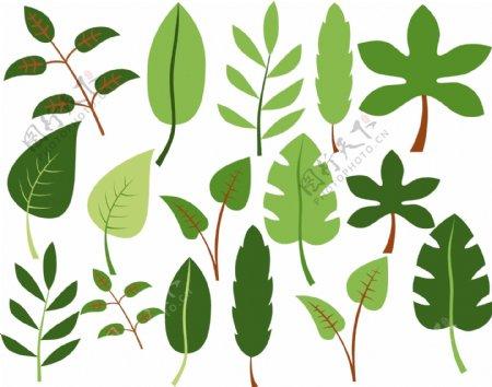 卡通植物树叶