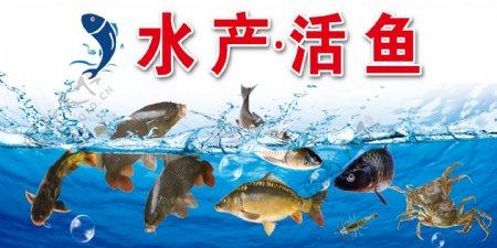 卖场淡水水产活鱼区图板用