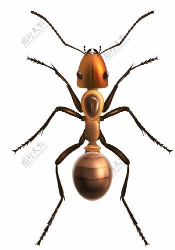 蚂蚁动物标志图标图形素材