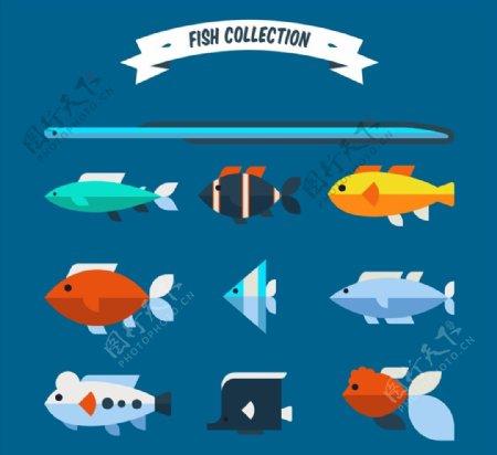 款扁平化鱼类图片