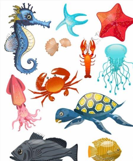创意海洋动物图片