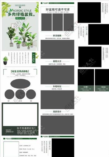 多肉绿植盆栽通用详情描述页图片