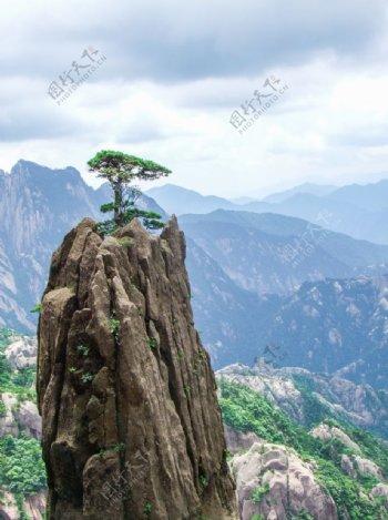 迎客松山峰旅游旅行背景海报素材图片