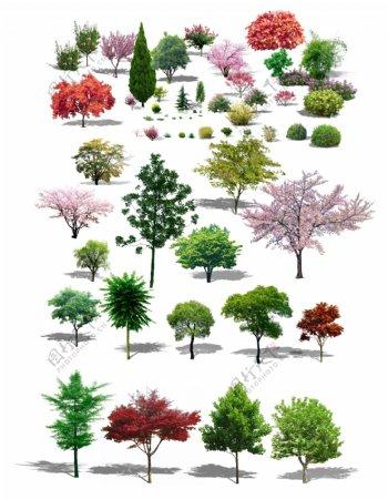 树素材卡通树树木大树图片