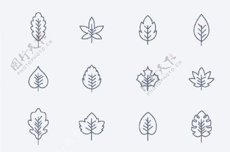 树树叶标志图标图片