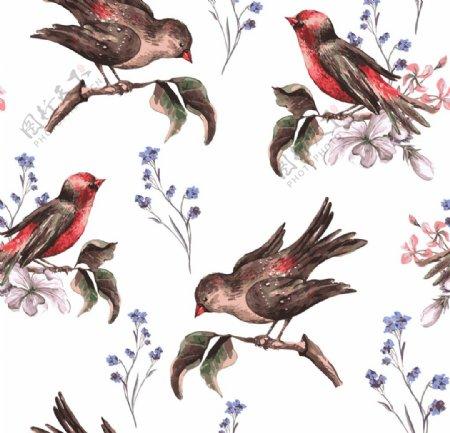 手绘花卉小鸟图片