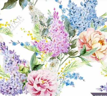 丁香花与牡丹花图片
