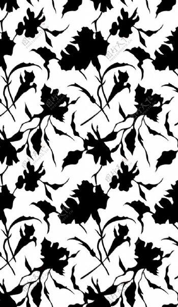 白底黑花图片