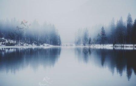 倒影反光摄影松树雪图片