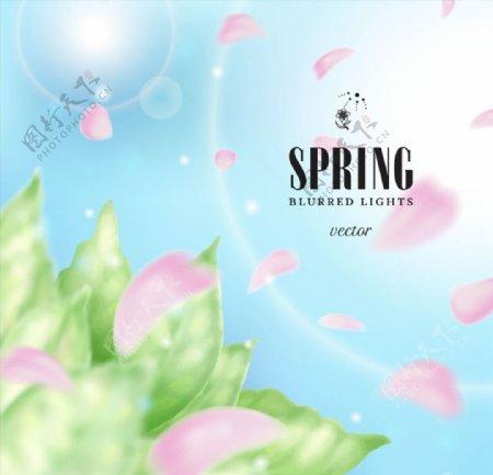 春季光晕与花瓣图片