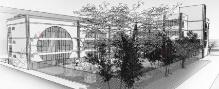 春波幼儿园大树灰图片