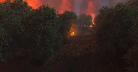 燃烧中的夜晚森林山火烟雾图片