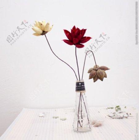 白底花瓶里的莲花图片