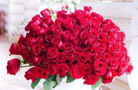 最美玫瑰花束图片