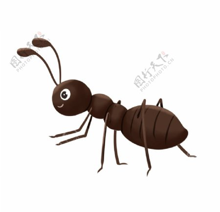 手绘卡通蚂蚁图片