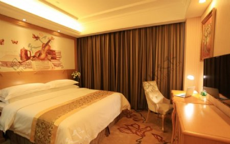 维也纳酒店行政套房图片