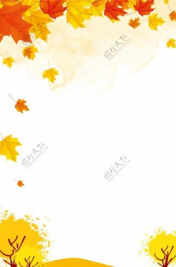 秋天枫叶背景图片