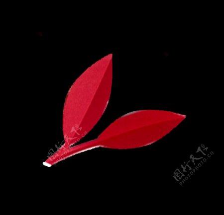 红叶子图片