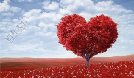 红色爱心图片