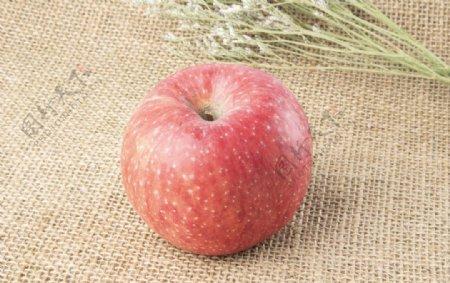 苹果拍摄素材图片