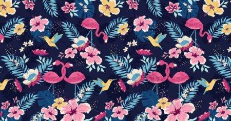 夏威夷风情兰花火烈鸟循环素材图图片