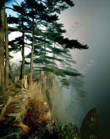 岩松油画图片