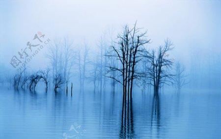 水雾风景油画图片