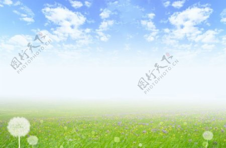蒲公英花园蓝天白云图片