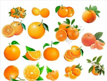 橘子橙子柑橘沃柑砂糖橘图片