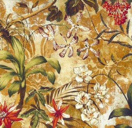 美式植物花朵装饰画图片