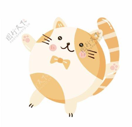 圆圆的小猫图片