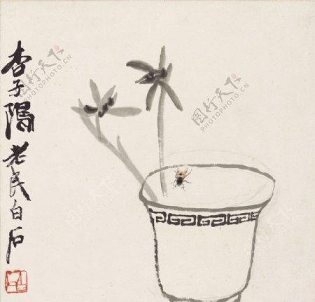 齐白石国画兰草蜜蜂图图片