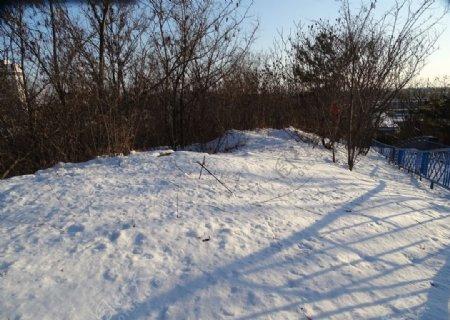 冬雪阳光图片